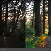 Lightroom-Before-and-After-Pendle-Hill-6