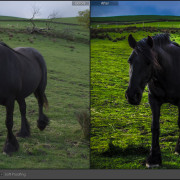 Lightroom-Before-and-After-Pendle-Hill-c-3